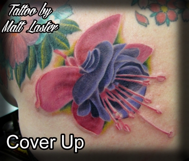 Convention cover up
